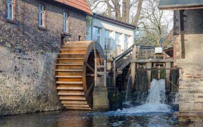 Naturbeobachtung am Mühlrad – Nackte Mühle, Osnabrück